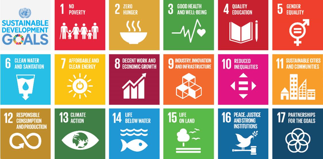 17 tiles of UN sustainability goals