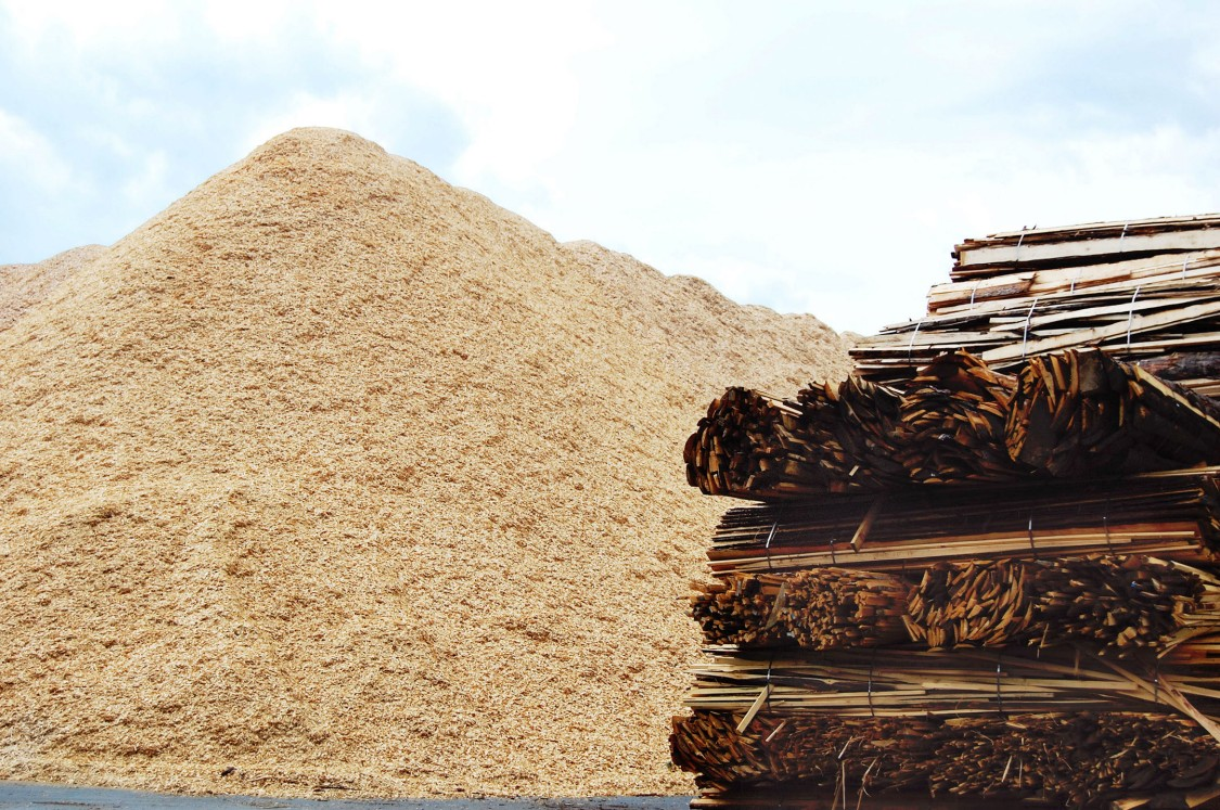 biomass a valuable fuel