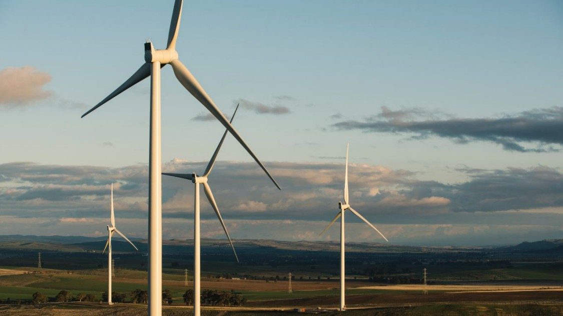 photo of the Hornsdale Wind Farm in South Australia
