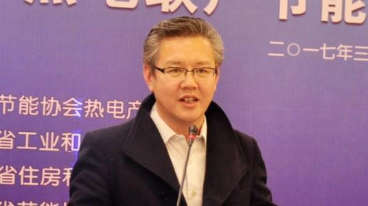 中国节能协会热电产业联盟秘书长张东胜